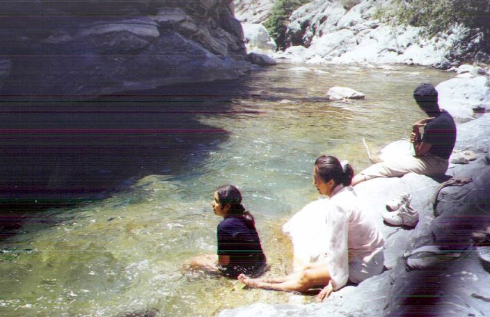 Resting Under the Bridge